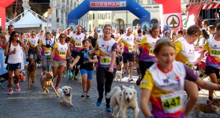 lions udine maratona